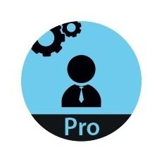 4D Developer Professional v16