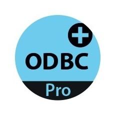 4D ODBC Pro Expansion v17 - 1 user
