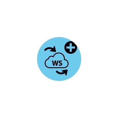 4D Web Services Exp. for 4D Client v17 to v18 - 1 user