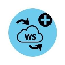 4D Web Services Exp. for 4D Client v18 - Unlimited