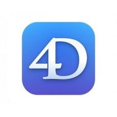 4D Team Developer Professional v19 - 2 users